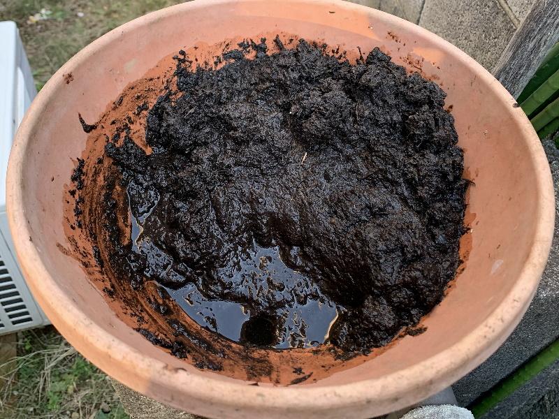 袋に浸水した腐葉土